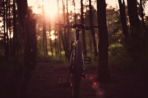 sportowe rowery kross
